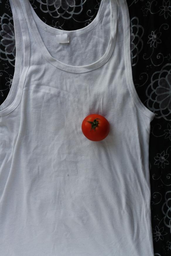 Lone tomato heart