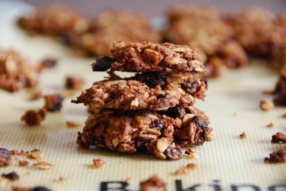 Cozy Honey-Cinnamon Oatmeal Cookies   The Graceful Kitchen