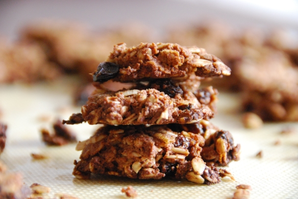 Cozy Honey-Cinnamon Oatmeal Cookies | The Graceful Kitchen